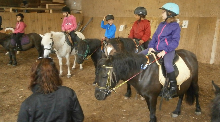 Stage poney 6-9 ans